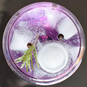 gin and tonic box